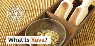 where to buy kava