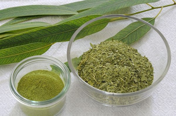 The Best Kratom Strains for an Opiate High